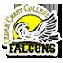 vs Cedar Crest College